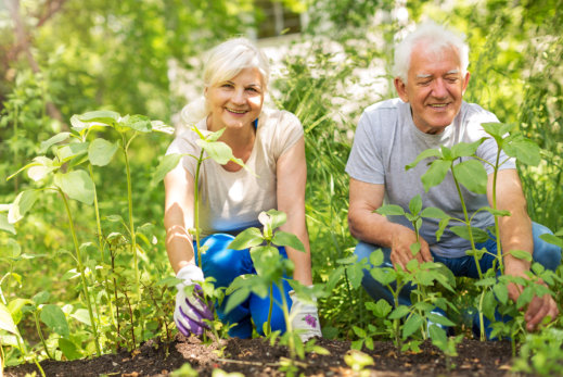 Top 5 Options for Healthy Activities Outdoors